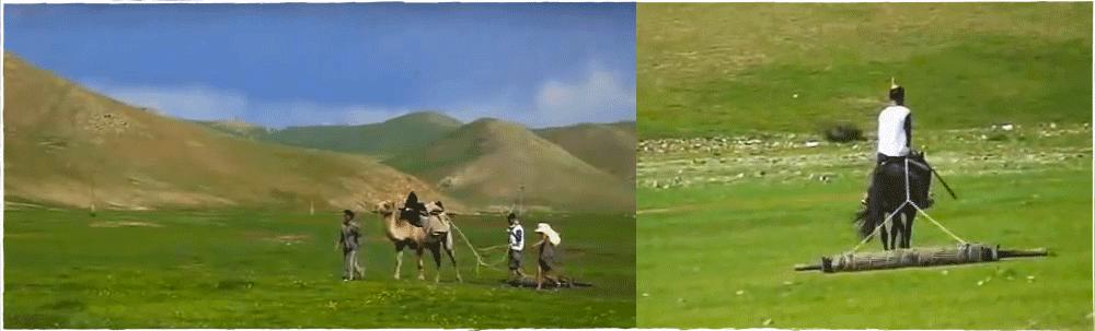 Mongolie vilten met kameel en paard youtube op viltflexplek